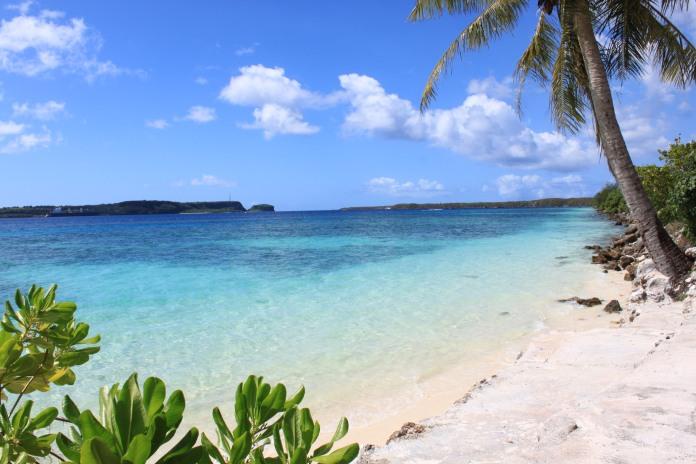 Tokyo and Guam 235